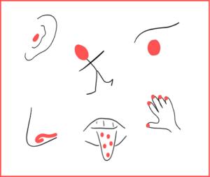 nakreslené obrázky smyslů